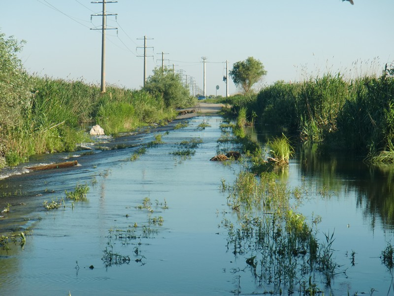 CIMG1282 S of Sulina water on road